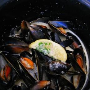 A Mussel Feast