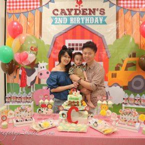 Mini C's 2nd Birthday Bash: 2 the Farm!